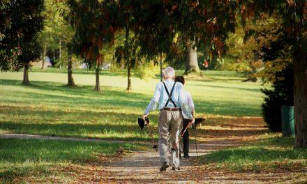 Pflege-Senioren Vital Fit Dienst Ambulant Diabetes